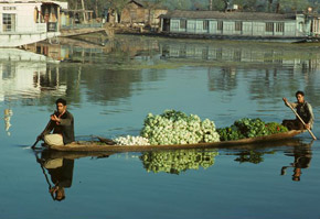 Floating Market, View of Boat selling vegetables on the lake, Srinagar, Kashmir.